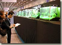 Aquascape Contest in Malaysia