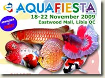 The 2nd National Discus Competition & Aquafiesta 2009