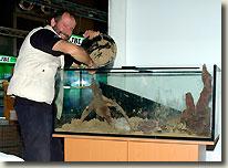 Bleher s biotopes aquarium zierfische 2008 aquapress for Zierfische aquarium