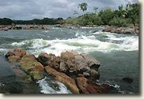 Rio Iriri Biotope, Brazil, by Heiko Bleher for PFK