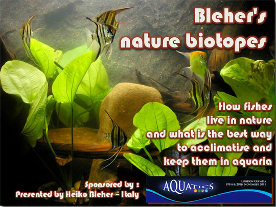 biotope-aquarium_london2011.jpg