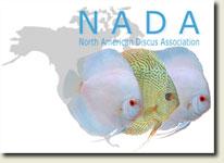 nada-2012-logo.jpg