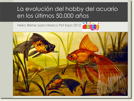 the-evolution-of-the_mexico2012_w.jpg