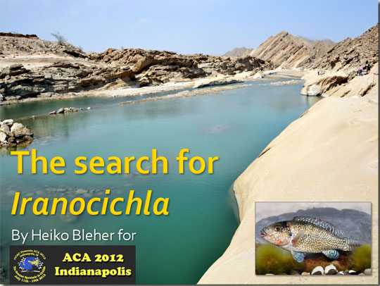 the-search-for-iranochichla_web.jpg