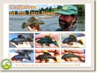 Lectures at the All Catfish Convention 2012