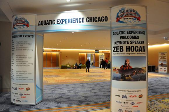 01A Aquatic-Experience-2013