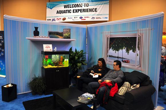 12A Aquatic-Experience-2013