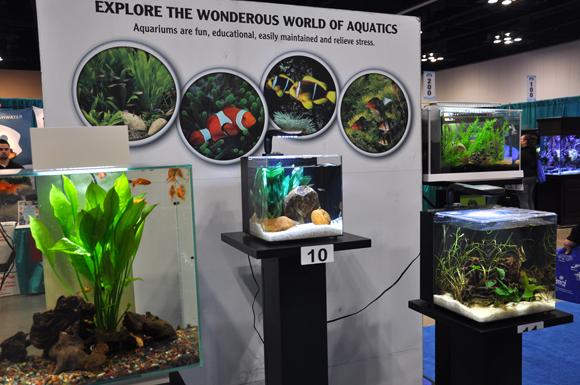 12B Aquatic-Experience-2013