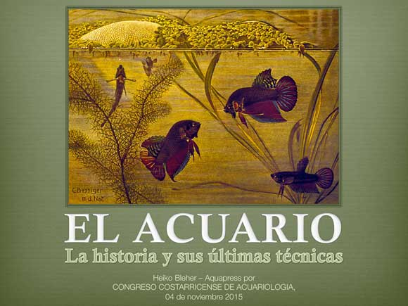 Acuario_Costa-Rica-580