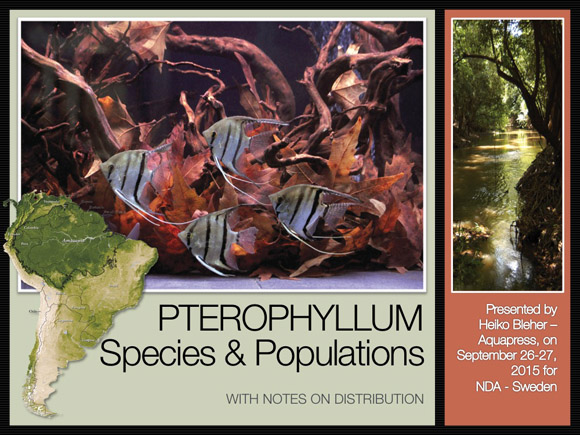 Pterophyllum for NDS-2015-2