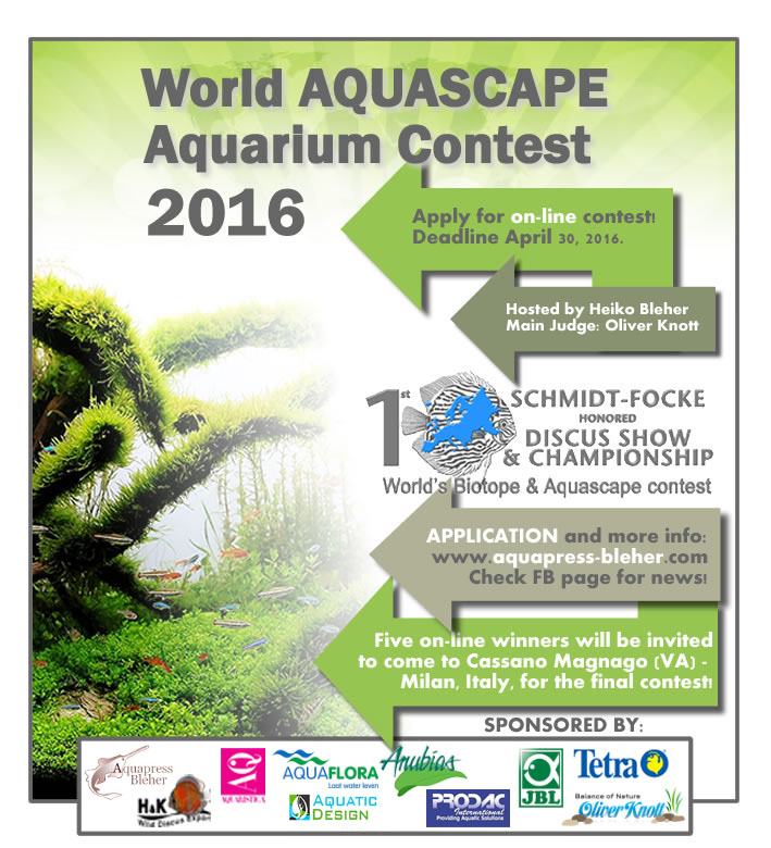 Bleher_contest_aquascape_v21