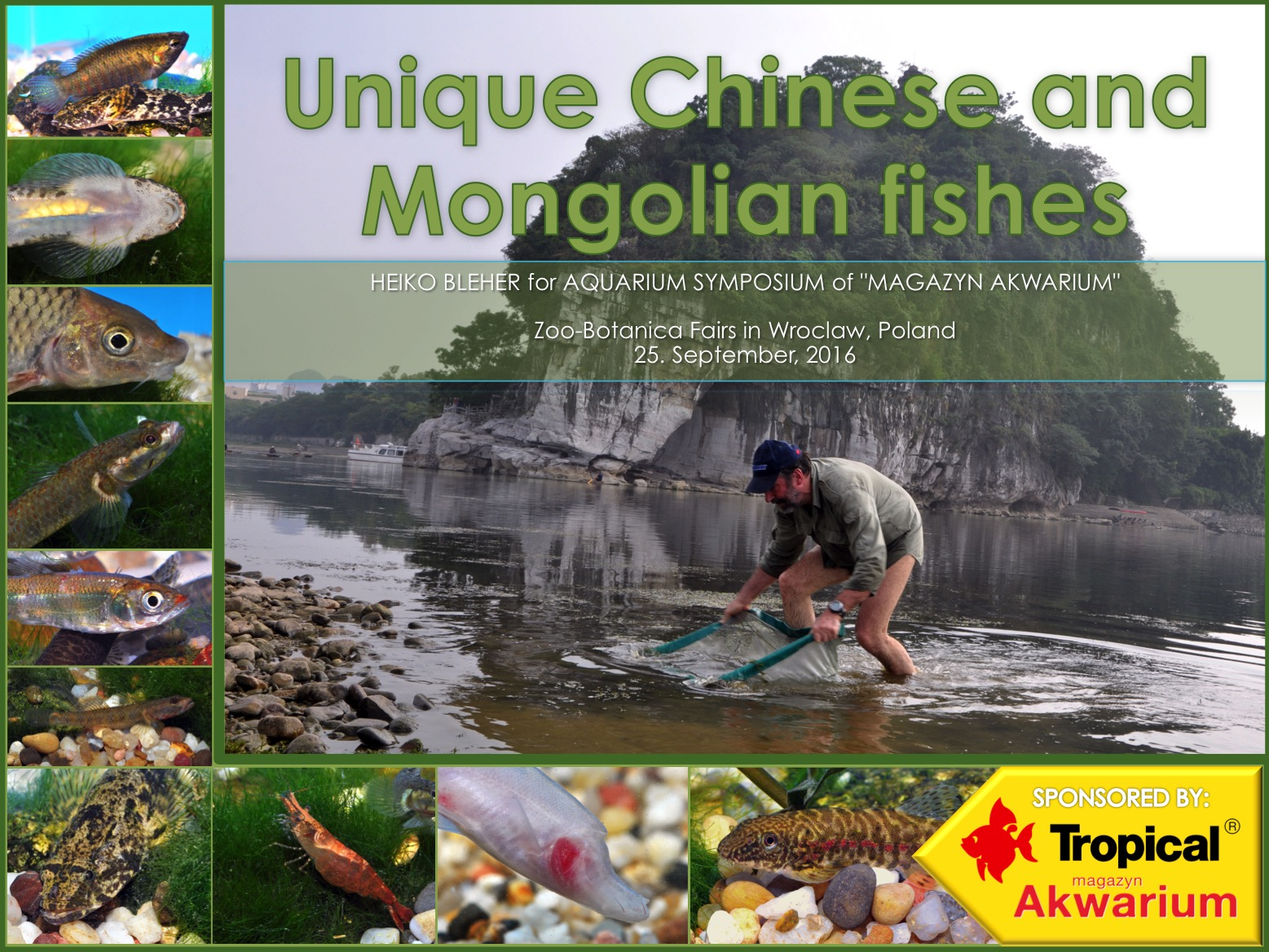 CHINESE FISHES_WROCLAW SYMPOSIUM_25-09-16