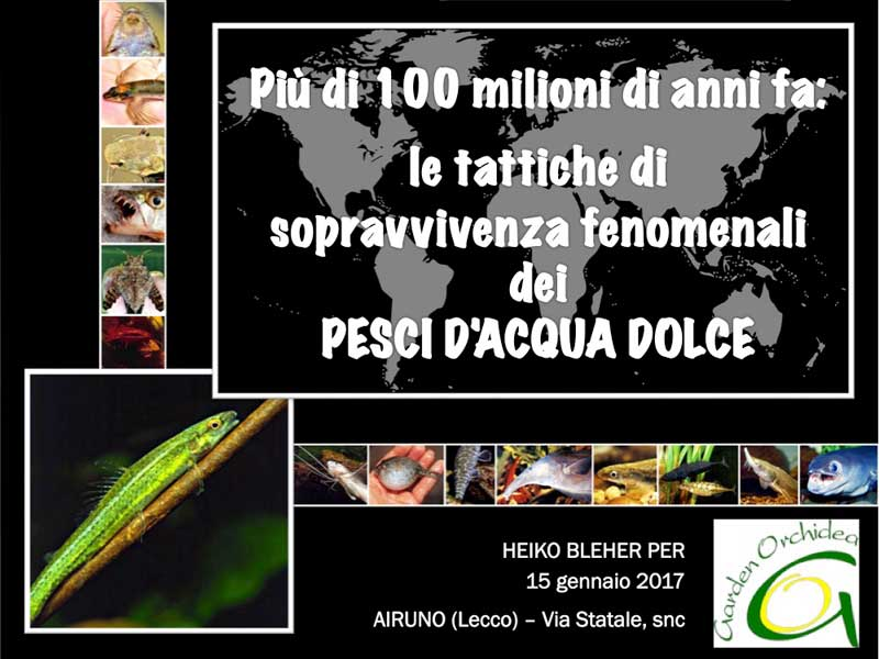 CONFERENCE AT GARDEN ORCHIDEA IN AIRUNO (LC) – ITALY