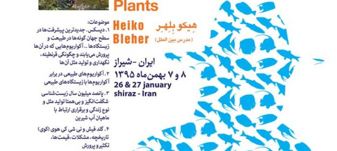 CONFERENCES AT SHIRAZ, IRAN