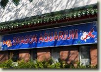 Dragon Aquarium in Toronto, Canada