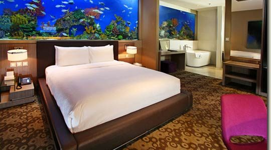 The new H2O Hotel with a giant aquarium in every room