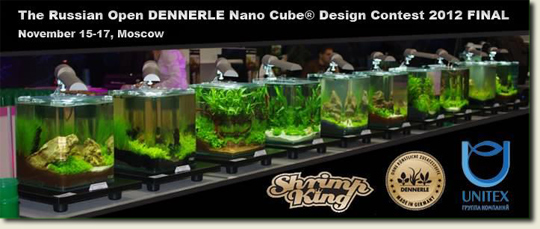 Lectures in Moscow at Dennerle Nanocube & Design Contest 2012