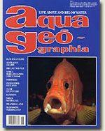 aqua geographia-4